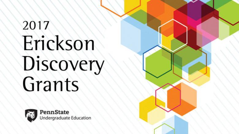 2017 Erickson Discovery Grants